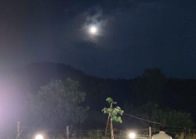 दुध में जब चंद्रमा ने अमृत बरसाया..